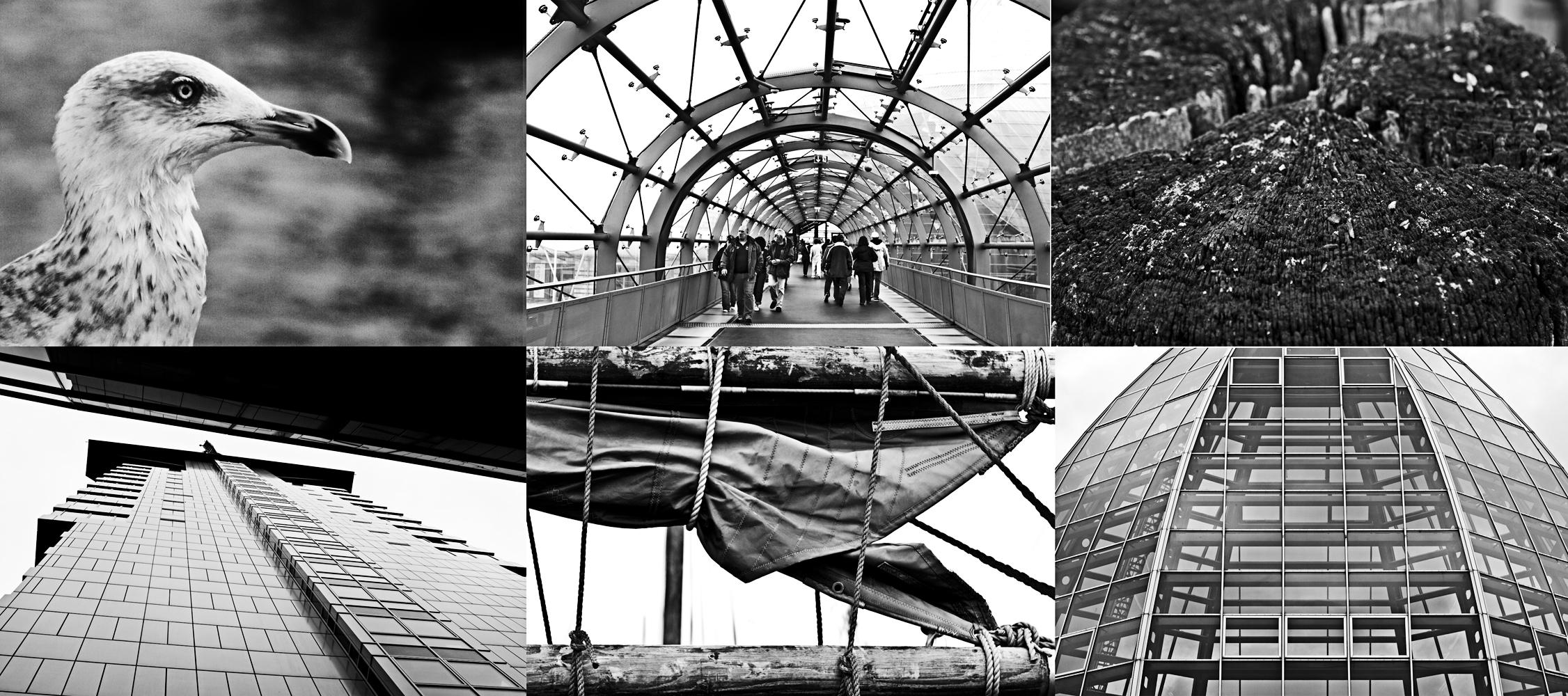 Collage1klein